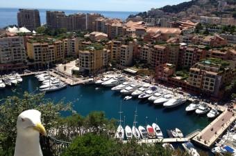 Mouette Monaco
