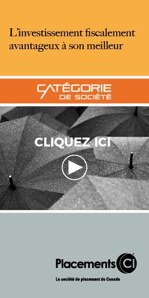 CATEGORIE DE SOCIETE-01